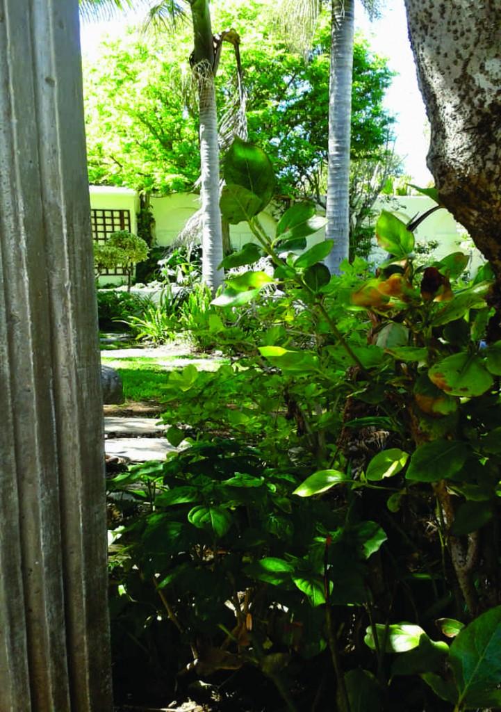 garden 1 c