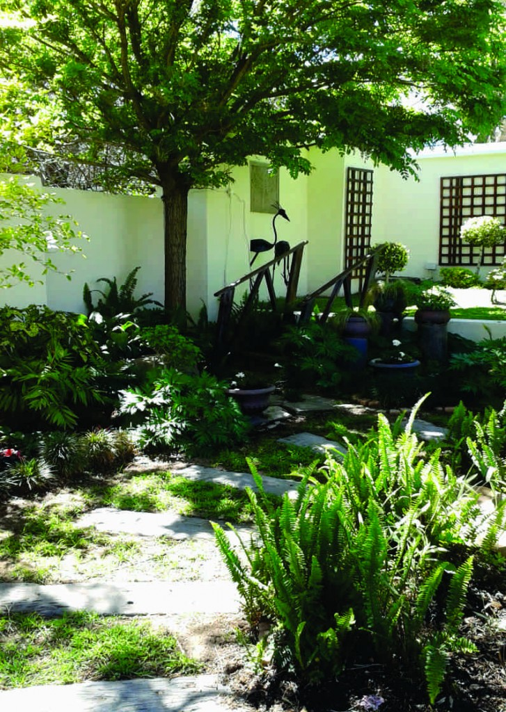 garden 1d